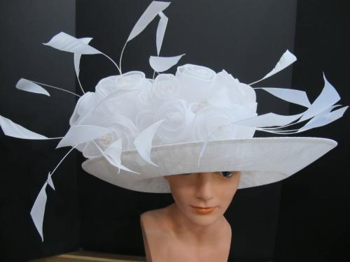 Beautiful Hat Nins Travelog