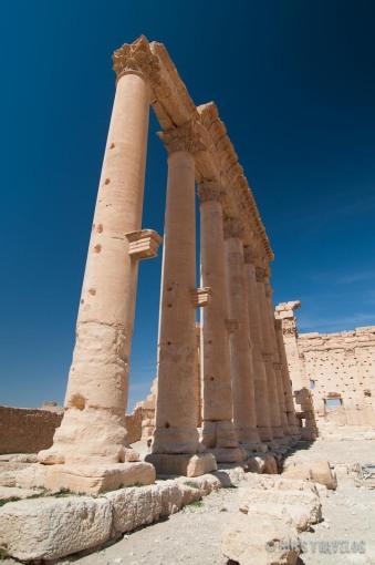 Palmyra-1