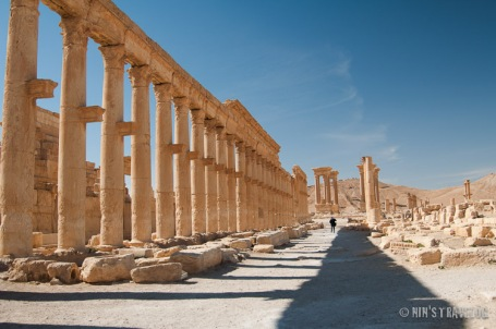 Palmyra-16