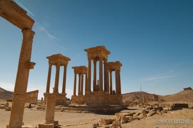 Palmyra-24