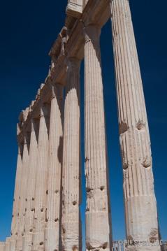Palmyra-7