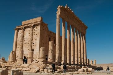 Palmyra-9