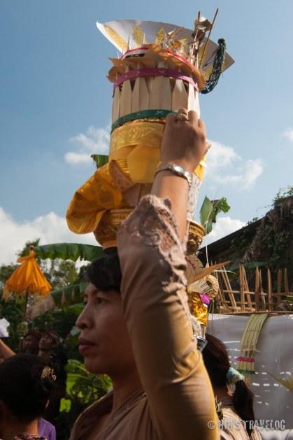 Balinese-5