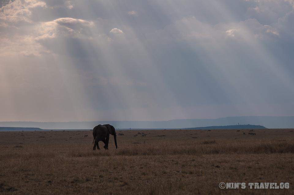 The Masai Mara Triangle