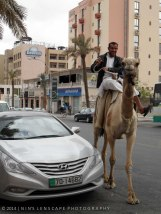 Looking for a bit of desert in Amman