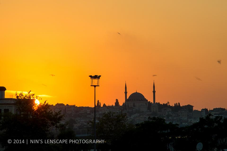20140726-TURKEY-0337