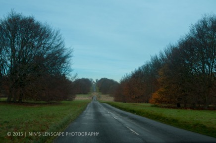 The road to Blenheim Palace