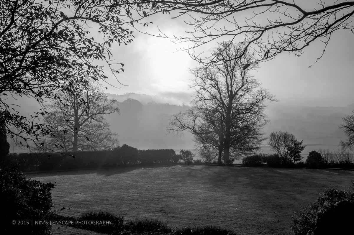 5 Day Photo Challenge: FoggyMorning
