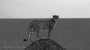 20130811-KENYA-0075-2