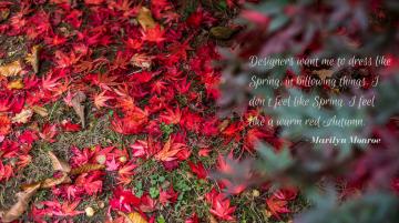 autumn-quote